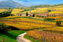 Blienschwiller (Alsace, F) (pietro68bleu) Tags: basrhin alsace village automne vignoble église h