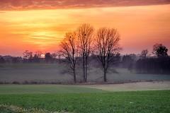 katki_61_F (marcin.kolakowski) Tags: autumn jesień wieś polska przyroda drzewa