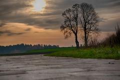 katki_58_f (marcin.kolakowski) Tags: autumn jesień wieś polska przyroda drzewa