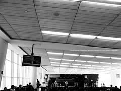 Gate 1 . Japan Air Lines. (mitsushiro-nakagawa) Tags: 新宿 manhattan usa london uk paris アンチノック milan italy lumix g3 fujifilm mothinlilac mil gfx50r bw mono chiba japan exhibition flickr youpic gallery camera collage subway street novel publishing mitsushiro nakagawa artist ny interview photograph picture how take write display art future designfesta kawamura memorial dic museum fineart