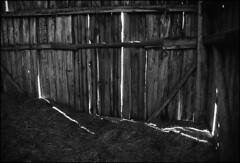 für ein schäferstündchen (-; (jo.sa.) Tags: analog schwarzweiss sw bw monochrom analogefotografie schwarzweissfotografie schuppen stroh analoge sc