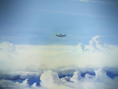 In the air... (Maria Godfrida) Tags: crazytuesday transport intheair plane privateplane aircraft clouds blue sky white painting artwork
