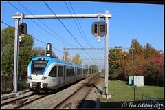 Arriva GTW-D 5044, Elst (10-11-2019) (Teun Lukassen) Tags: breng arriva gtwd 5044 elst arnhem tiel betuwelijn achterhoek trains treinen züge 2019