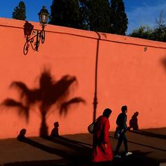 Walk in Orange (Le.Patou) Tags: maroc morocco marrakech koutoubia fz1000 street streetlife people orange shadow light streetview evening sundown city citylife blue urban wall cité