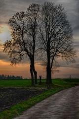 katki_54_F (marcin.kolakowski) Tags: autumn jesień wieś polska przyroda drzewa