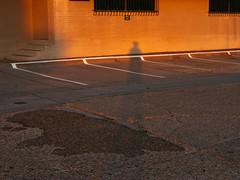 Levee St. (Zack Huggins) Tags: canonpowershotg9 vscofilm pack01 dallastx designdistrict selfportrait selfie longshadow sunset goldenhour gold orange parkinglot urban walkabout sundayfunday pointandshoot compact digitalcompact advancedcompact rnifilms afternoon magichour summer summertime asphalt city legs lines light shadow shade shadowportrait stairs warehouse dusk fadinglight endofday