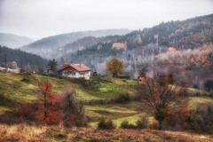 2K5A7109с (Seen By Ellie) Tags: idyllic pastoral mountains forest rhodope bulgaria autumn fall trees horizon