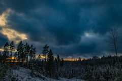 Winter scene III (mabuli90) Tags: finland forest snow winter clouds sky trees sunset night landscape nature