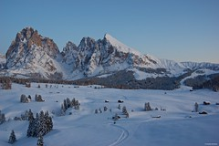 IMGP3756 Sunset (Claudio e Lucia Images around the world) Tags: alpedisiusi valgardena dolomiti alpe di siusi val gardena snow winter mountains adler lodge ortisei sassolungo sassopiatto sky christ cross pentax pentaxk3ii pentaxcamera pentaxlens pentaxart cold unesco pentax18135 gröden sciliar clouds tree sella sellagroup