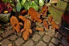GERMANY Siebenmühlental,  an der Eselsmühle, rostige Schweine,  76820/12119 (roba66) Tags: pig schweine rost eisen gag skulpturen figuren art kunst siebenmühlental eselsmühle germany deutschland badenwürttemberg roba66