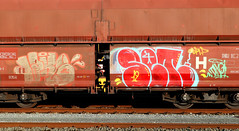 Graffiti on Freights (wojofoto) Tags: amsterdam nederland netherland holland güterzug cargotrain vrachttrein freighttraingraffiti freighttrain freights fr8 graffiti streetart wojofoto wolfgangjosten set jake throwup throw throwups throws