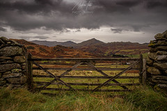 Gated community (Andrew Teece) Tags: lakedistrict england englishcountryside cumbria ulpha autumn moodysky