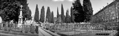 Descobrint el cementiri de Sabadell / Sabadell Cementery (SBA73) Tags: càmara camera photo photographic photography fotografia foto historia vintage old analogic collect kodak historic panoramic unusual swing panoramica panoram no1 modelc box catalunya catalonia catalogne catalogna katalonien vallès vallèsoccidental sabadell cementiri cementerio cementery graveyard tombes tumbas tombs mausoleus mausoleum xiprers cipreses panorama silenci silencio silence filmisnotdead filmphotography filmisalive
