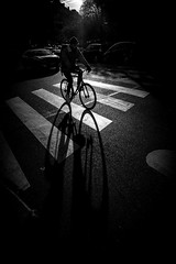 Velo (Mustafa Selcuk) Tags: france zebracrossing photoderue streetphotography streetphotographer street fujifilm fujifilmfrance parisienne parisian paris silhoutte backlight morning riding bicycle velo monochrome monochromatic blackandwhitephotography noiretblanc noiretblancphotographie bnw blackandwhite