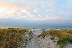 Sand in my Shoes | The Path (picsessionphotoarts) Tags: dierhagen nikon nikonphotography nikonfotografie nikond850 norddeutschland ostsee balticsea wellenbrecher stilllifephotography stillleben buhnen afsnikkor20mmf18g sonnenuntergang sunset sunsetbythesea