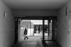 last man standing (Meergraf) Tags: photowalk vienna wien nikon nikonf4 kodak kodakfilm homedevelopedfilm analogfilm blackandwhite schwarzweiss last man standing austria 2019 visualartist streetphotography maximilian meergraf
