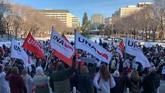 Nurses Rally Against Cuts (livingsanctuary) Tags: edmonton alberta yeg nurses ndp ucp protest rally ableg yegphotographer