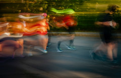 Racing Stripes - Twin Cities Marathon (j-rye) Tags: fall ilce7rm2 minneapolis a7rm2 athletic event light marathon mirrorless morningsun race running shadows sony sonyalpha handheld