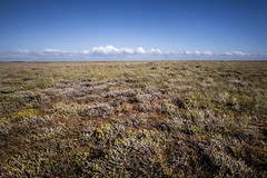 No Boat.... - Patagonia, Chile (pas le matin) Tags: landscape paysage travel world voyage patagonie patagonia terredefeu tierradelfuego chili chile minimal minimalist minimaliste sky ciel clouds nuage