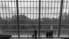Beyond the Window (0zymand1as) Tags: windows glass tall wall watching people kid adult black white bw fall museum new york metropolitan art egyptology lines geometry symmetry sony a7 a7r a7rii a7r2