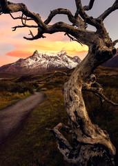 Torres del Paine National Park (C.Kaiser) Tags: cerropainegrande chile patagonia patagonien batis2818