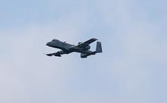A-10 2 (kilohotelphoto) Tags: a10 warthog maryland air national guard hellfire missle