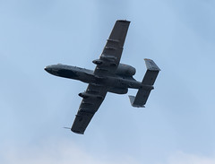 A-10 1 (kilohotelphoto) Tags: a10 warthog maryland air national guard hellfire missle