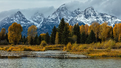 Schwabacher Landing II (chasingthelight10) Tags: landscapes travel events photography forests foliage mountains meadows rivers snowscenes places oxbowbend wyoming grandtetonnationalpark schwabacherlanding willowflats snakeriver