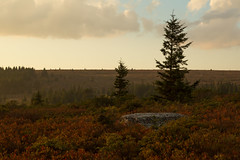 Raining at Sunset (Ken Krach Photography) Tags: westvirginia dollysods
