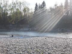 Erleuchtet (BCHTLCK) Tags: inn bayern bavaria fluss ufer sonne lesen entspannung ruhe silence olympusem10 em10 olympuskameras