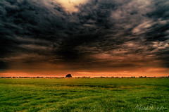 Must Be Something In The Weather (Alfred Grupstra) Tags: nature sunset landscape ruralscene sky meadow agriculture cloudsky outdoors farm field grass scenics sun summer sunlight dusk cloudscape beautyinnature sunrisedawn 988