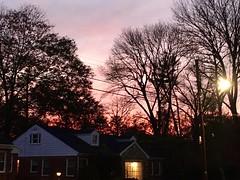 pretty November sky (karma (Karen)) Tags: baltimore maryland sunset pastels trees lights iphone