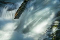Rushing water (OregonDOT) Tags: mckenziepass mckenziehighway mckenzie or242 scenicoregon scenic oregondot oregon