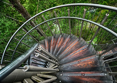 Spiral staircase in Vancouver, Canada (` Toshio ') Tags: toshio vancouver britishcolumbia canada spiral staircase forest capilanosuspensionbridgepark capilano stairs wooden pathway fujixt2 xt2