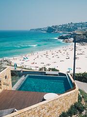 Sydney-121 (caseymotto) Tags: sydney opera house australia blue mountains cemetery art ocean beach pool bridge ferry kangaroo carnival luna park stingray