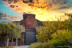 Frog's Leap Winery (Sierra Springs Photography) Tags: sierraspringsphotography frogsleapwinery rutherford winery napavalley wine fall autumn farm