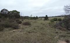 Lot 168 360 Sandy Point Road, Windellama NSW