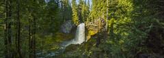 Waterfall near the highway (OregonDOT) Tags: mckenziepass mckenziehighway mckenzie or242 scenicoregon scenic oregondot oregon