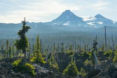 North Sister, Middle Sister (OregonDOT) Tags: mckenziepass mckenziehighway mckenzie or242 scenicoregon scenic oregondot oregon