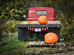 Pumpkin Hauler (HTT) (13skies) Tags: redtruck pumpkins truck flatbed older fall orange taillights rearend backend sitting green truckthursday happytruckthursday singleshothdr mudflaps