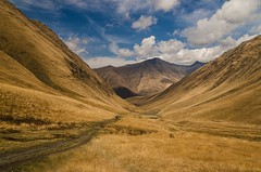 Valley walk (E-C-K ART) Tags: mountain kazbegi juta hiking hike golden valley clouds path walk georgia yellow wanderlust