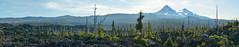 Panoramic view (OregonDOT) Tags: mckenziepass mckenziehighway mckenzie or242 scenicoregon scenic oregondot oregon