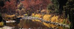Malibu Creek State Park Autumn 2019-2019 (pekabo90401) Tags: photomerge malibucreekstatepark losangeleswinterfall cloudyday birdingwithfriends 100400 80d canon80d canon camaraderie lightroom pekabo90401 miniaturesetting fallcolors nobirdsinthisphoto landscape