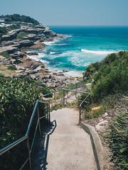 Sydney-122 (caseymotto) Tags: sydney opera house australia blue mountains cemetery art ocean beach pool bridge ferry kangaroo carnival luna park stingray