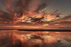 Sky Fire Reflections (larwbuck) Tags: birds landscape autumn beach california clouds colors fall lagoon ocean reflection seascape sunset travel water
