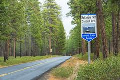 Scenic Byway (OregonDOT) Tags: mckenzie mckenziehighway mckenziepass or242 scenicoregon scenicbyway oregondot oregon