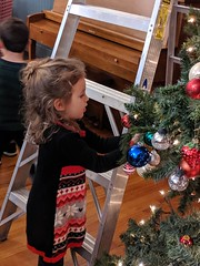 2019 Decorating the Christmas Tree