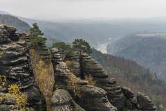 Dunstiger Elbblick (Panasonikon) Tags: panasonikon sonya7 felsen mountain baum tree landschaft landscape ilce7 sonyalpha sel2870 elbsandsteingebirge sächsischeschweiz elbe