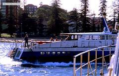 T 030 1980 06 03 035 (wvjqkjmy43) Tags: ferry hydrofoil fairlight manly