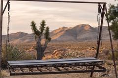 Mojave Swinging (magnetic_red) Tags: swing glider desert joshuatree mojavenationalpreserve mountains